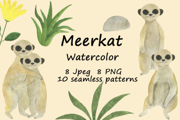 Set Meerkats Illustrations Watercolor Graphic Illustrations By shishkovaiv