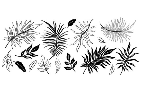 Download Free Black And White Tropical Plant Set Graphic By Arina Ulyasheva for Cricut Explore, Silhouette and other cutting machines.