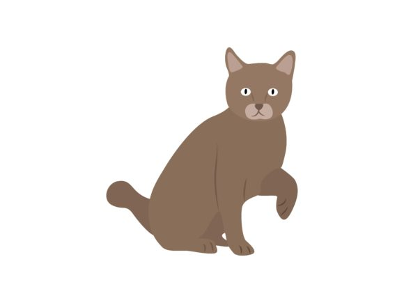 Download Free Scottish Fold Cat Face Right Animal Graphic By Archshape for Cricut Explore, Silhouette and other cutting machines.