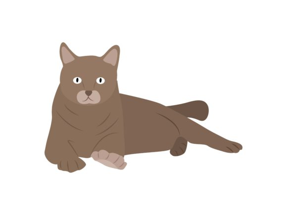 Download Free Scottish Fold Cat Sit Animal Graphic By Archshape Creative Fabrica for Cricut Explore, Silhouette and other cutting machines.