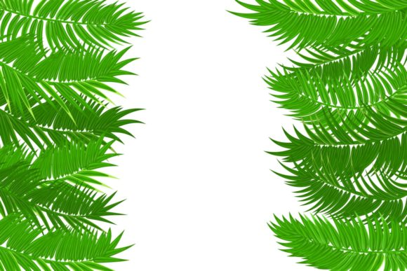 Green Palm Leaves Frame Banner Isolated Graphic Illustrations By Kapitosh