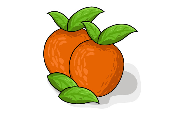 Orange Vector Illustration   Graphic Food & Drinks By ninik.studio