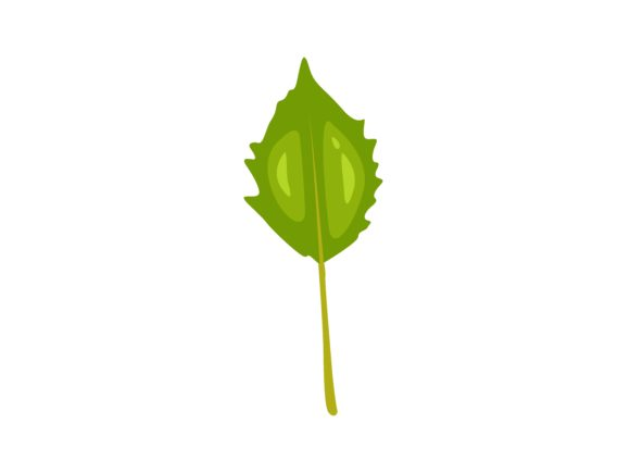 Download Free Physalis Angulata Leaf Graphic By Purplebubble Creative Fabrica for Cricut Explore, Silhouette and other cutting machines.