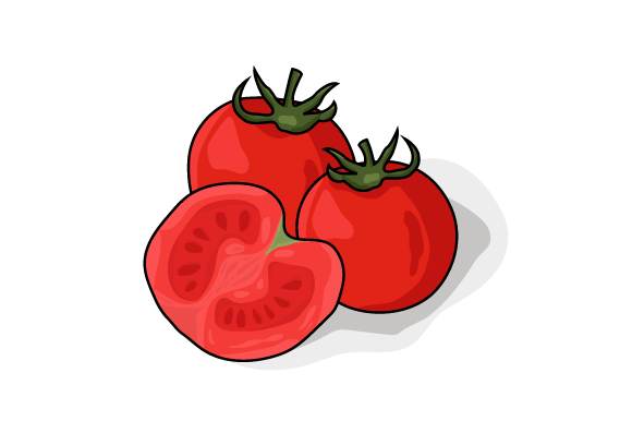 Tomato Vector Illustration  Graphic Food & Drinks By ninik.studio