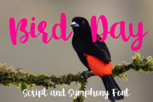 Print on Demand: Bird Day Script & Handwritten Font By Supersemar Letter