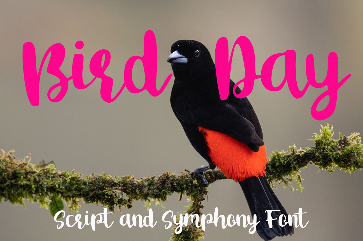 Download Free Bird Day Font By Supersemar Letter Creative Fabrica for Cricut Explore, Silhouette and other cutting machines.