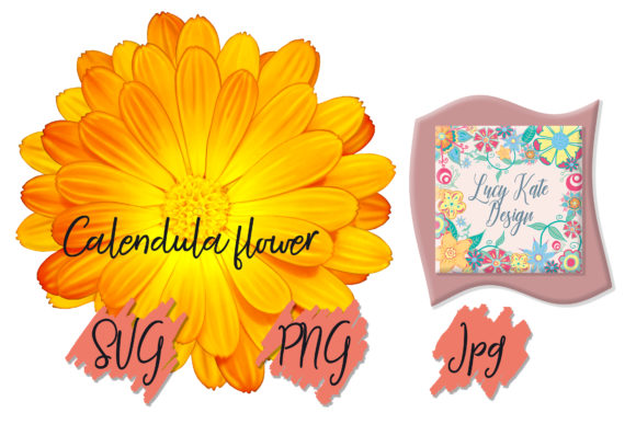 Print on Demand: Calendula Flower Graphic Nature By Lucy Kate Design
