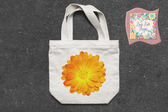 Download Free Calendula Flower Graphic By Lucy Kate Design Creative Fabrica for Cricut Explore, Silhouette and other cutting machines.