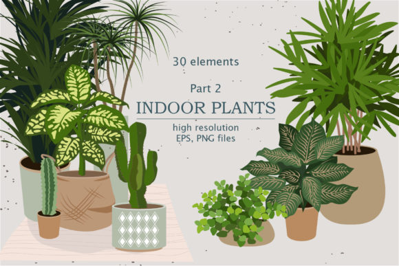 Indoor Plants Clipart Part 2 Graphic Illustrations By lena-dorosh