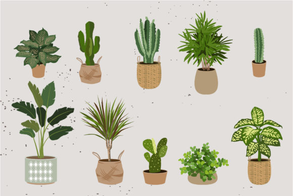 Download Free Indoor Plants Clipart Part2 Graphic By Lena Dorosh Creative for Cricut Explore, Silhouette and other cutting machines.