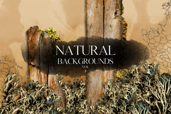 Print on Demand: Natural Backgrounds Vol.3 Graphic Backgrounds By freezerondigital