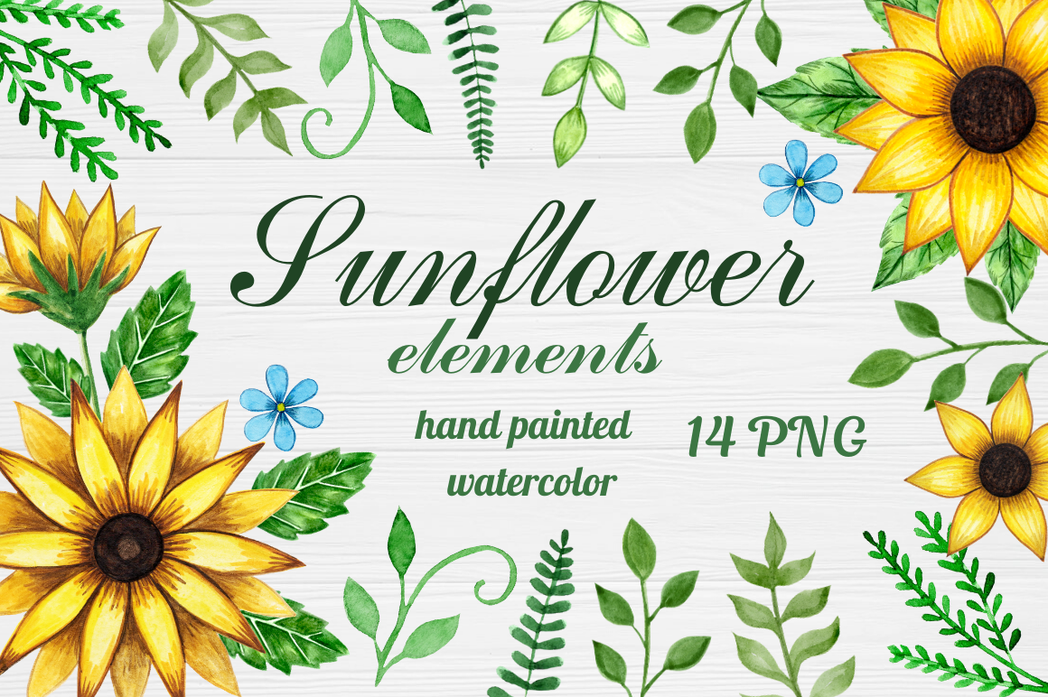 Download Free Watercolor Sunflower Elements Clipart Graphic By Magic World Of for Cricut Explore, Silhouette and other cutting machines.
