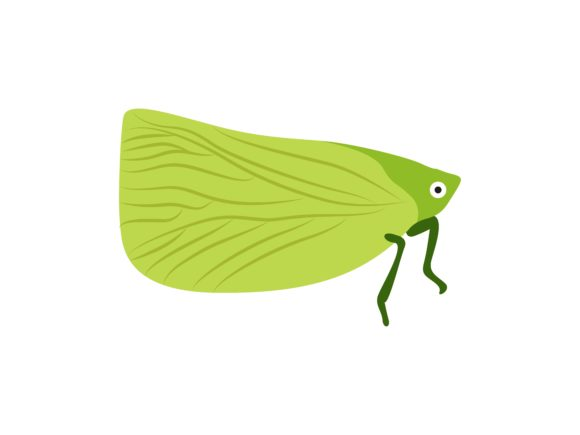 Download Free Katydid Insect Animal Graphic By Archshape Creative Fabrica for Cricut Explore, Silhouette and other cutting machines.