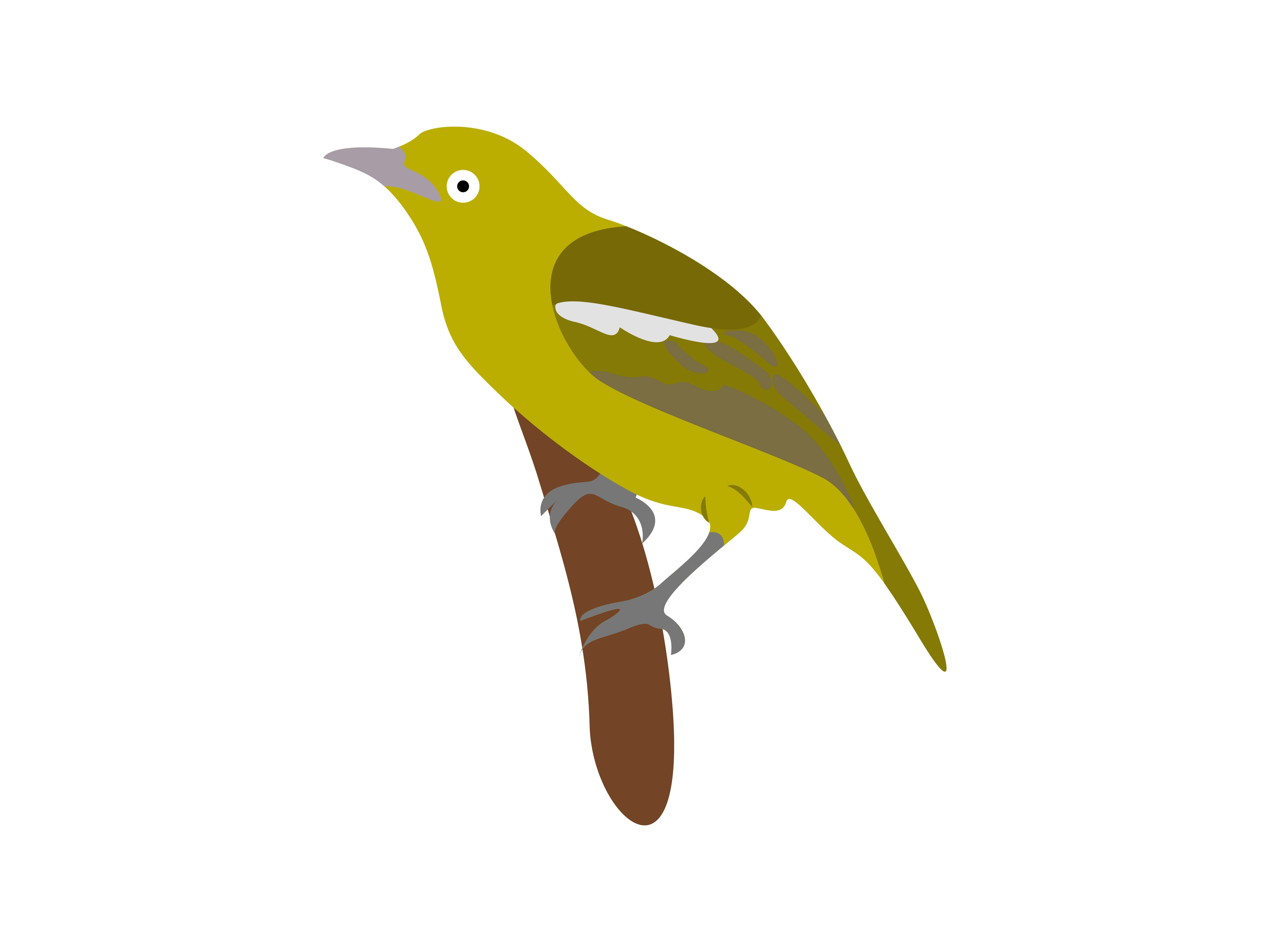 Download Free Green Bird Animal Graphic By Archshape Creative Fabrica for Cricut Explore, Silhouette and other cutting machines.