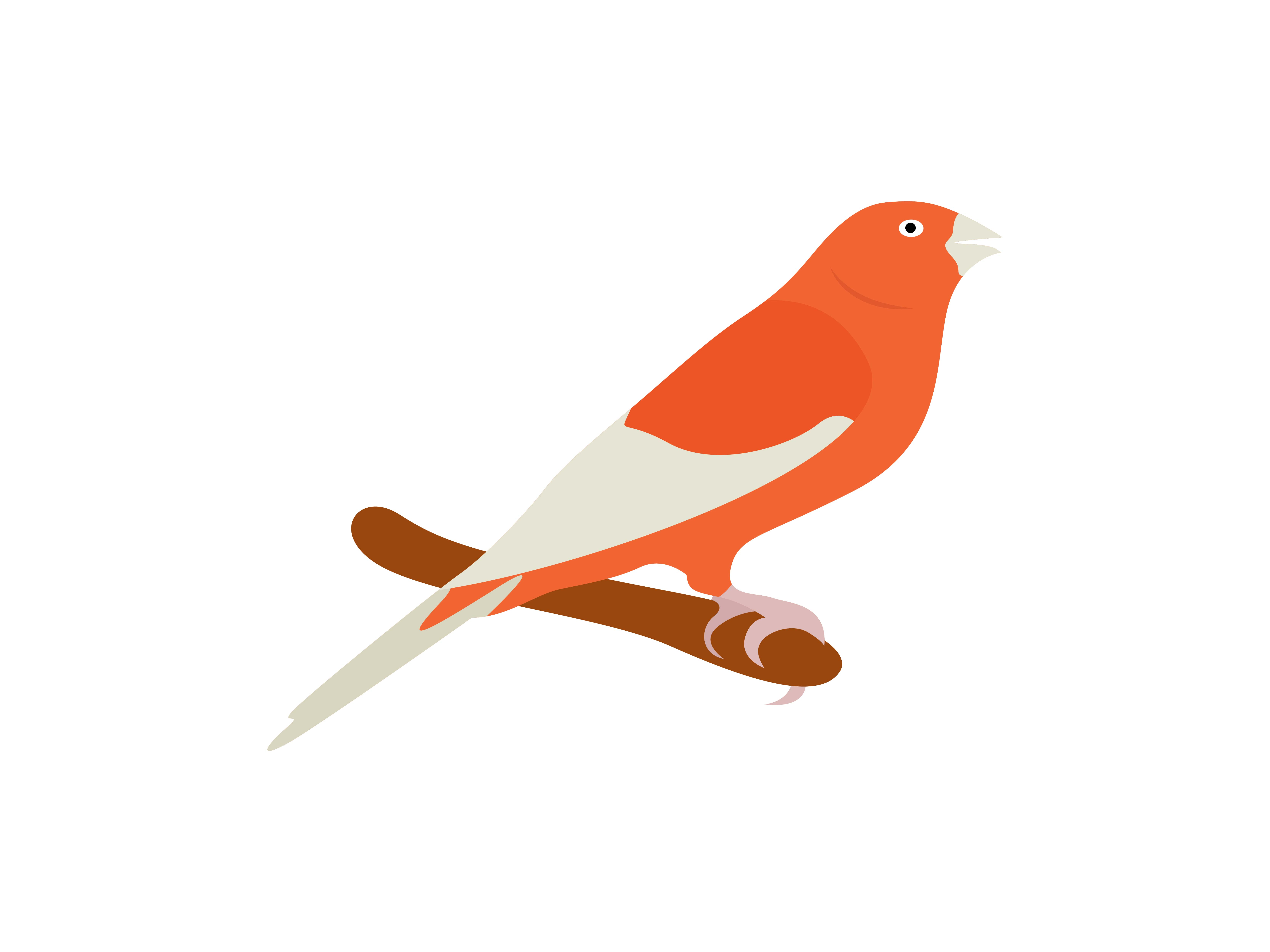 Download Free Red Vactor Bird Animal Graphic By Archshape Creative Fabrica for Cricut Explore, Silhouette and other cutting machines.