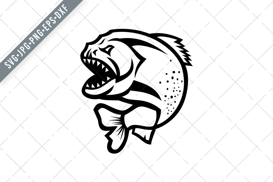 Download Free Angry Piranha Jumping Up Isolated Graphic By Patrimonio for Cricut Explore, Silhouette and other cutting machines.