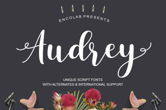 Print on Demand: Audrey Script & Handwritten Font By Encolab