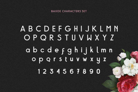Print on Demand: Baxoe Sans Serif Font By 160 Studio - Image 4
