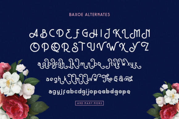 Print on Demand: Baxoe Sans Serif Font By 160 Studio - Image 6