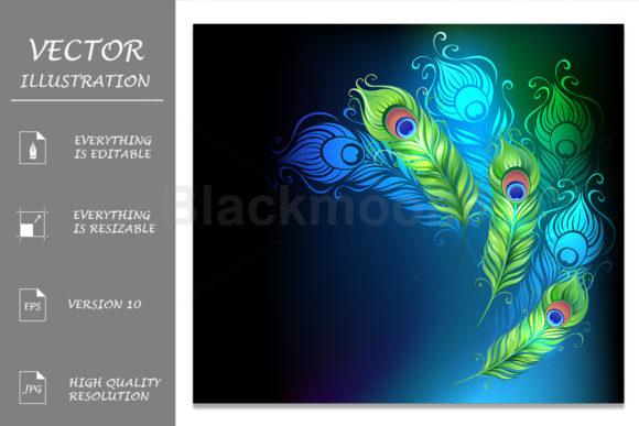 Bright Peacock Feathers Graphic Illustrations By Blackmoon9