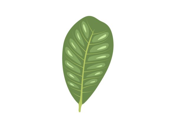 Download Free Cashew Leaf Graphic By Purplebubble Creative Fabrica for Cricut Explore, Silhouette and other cutting machines.