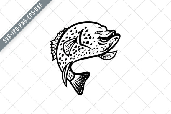 Download Free Crappie Fish Jumping Up Mascot Graphic By Patrimonio Creative for Cricut Explore, Silhouette and other cutting machines.