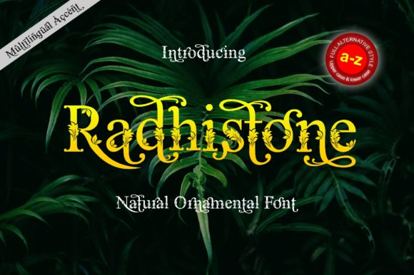 Print on Demand: Radhistone Serif Font By ZetDesign