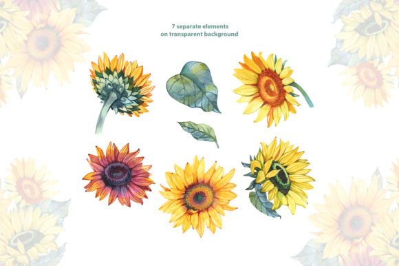 Watercolor Sunflowers Graphic Illustrations By NataliMyaStore - Image 4