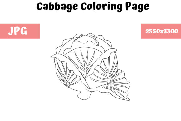 Print on Demand: Cabbage - Coloring Page for Kids Graphic Coloring Pages & Books Kids By MyBeautifulFiles