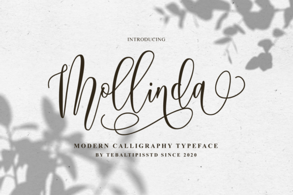 Print on Demand: Mollinda Script & Handwritten Font By tebaltipiss