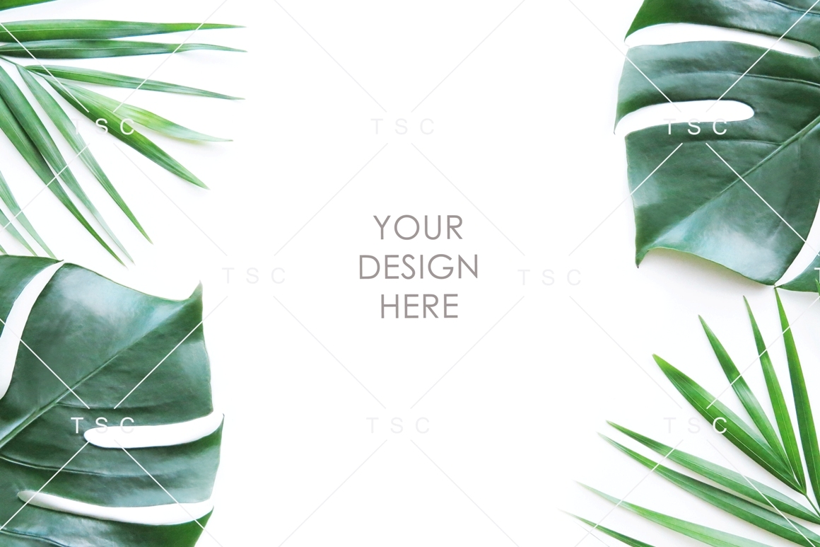 Tropical Leaves Stock Photo Graphic By Thesundaychic Creative Fabrica Find the best free stock images about tropical leaves. tropical leaves stock photo