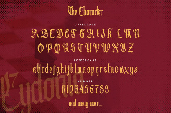 Print on Demand: Cydonia Blackletter Font By typotopia - Image 3