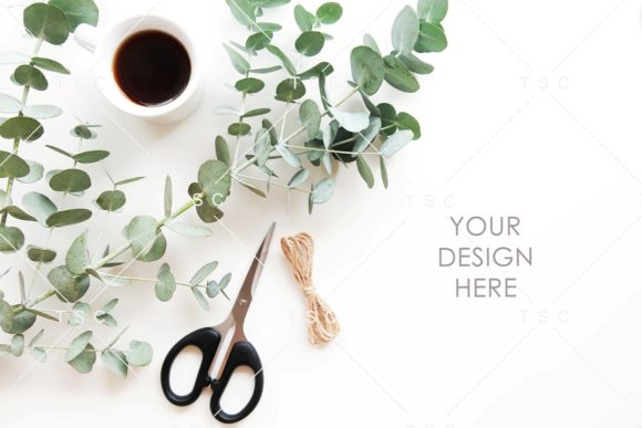 Eucalyptus Leaves Stock Photo Graphic Nature By thesundaychic