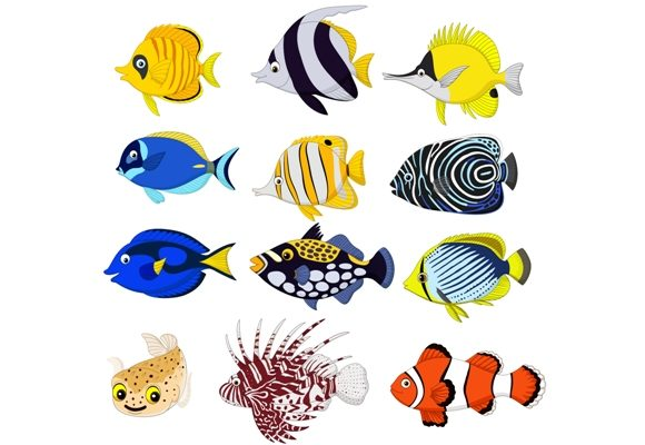 Tropical Fish Clipart Set Graphic Graphic Illustrations By tigatelusiji
