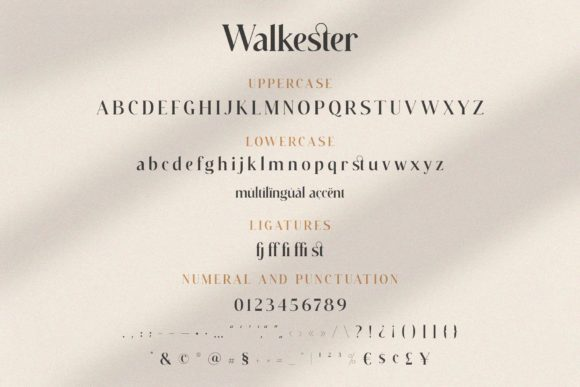 Print on Demand: Walkester Callstories Serif Font By BrandSemut - Image 13
