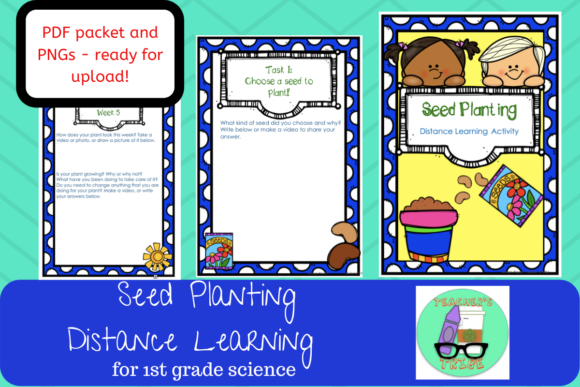 Distance Learning - Plant a Seed Graphic 1st grade By Teacher's Tribe