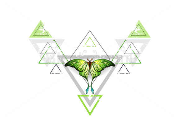 Geometric Pattern with Green Butterfly Graphic Illustrations By Blackmoon9