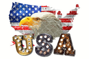 Print on Demand: Sublimation Eagle Map USA Lightbulb  Graphic Crafts By V-Design Creator