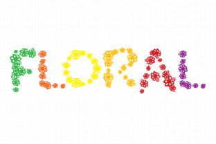 Print on Demand: Floral Display Font By GraphicsBam Fonts
