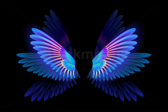 Glowing Hummingbird Wings Graphic Illustrations By Blackmoon9