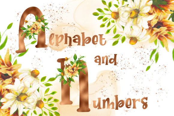 Print on Demand: Sunflower Copper Alphabet and Numbers Graphic Illustrations By Andreea Eremia Design