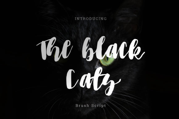 The Black Cats Font Free Download