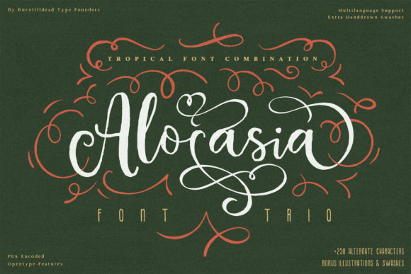 Print on Demand: Alocasia Script & Handwritten Font By Burntilldead