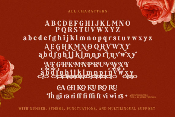 Print on Demand: Augillion Serif Font By saridezra - Image 11