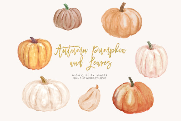 Print on Demand: Autumn Pumpkin Watercolor Clipart Graphic Illustrations By SunflowerLove