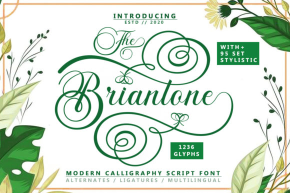 Print on Demand: Briantone Script & Handwritten Font By bungletter
