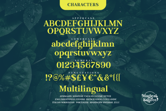 Print on Demand: Magical Source Serif Font By JavaPep - Image 14