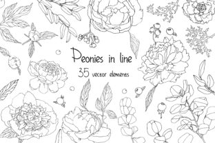 Print on Demand: Piones in Line Graphic Objects By VashaRisovasha