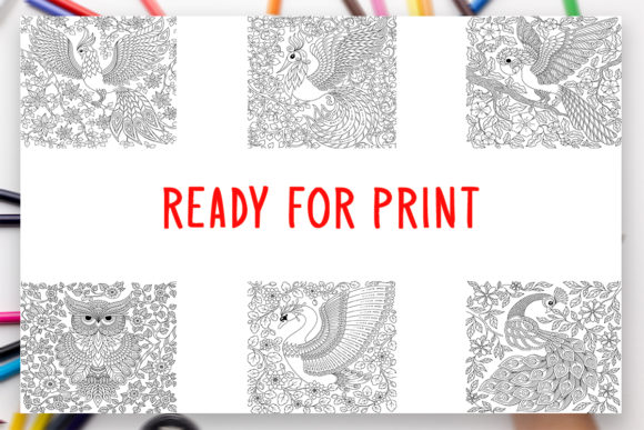 Print on Demand: 6 Birds Coloring Book for Adults Graphic Graphic Coloring Pages & Books Adults By DesignsBundles - Image 2