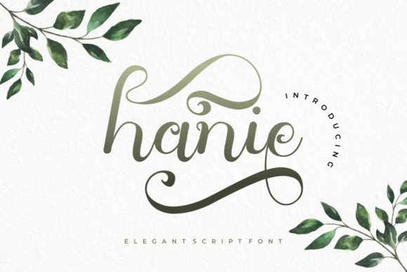Print on Demand: Hanie Script & Handwritten Font By yunitaecy